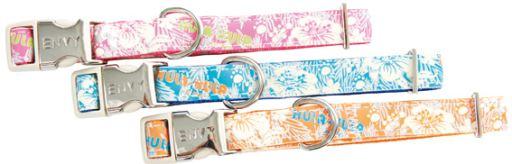 collars-for-dogs-zolux-collar-hula