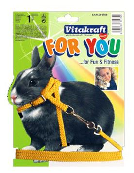 rabbit-harness