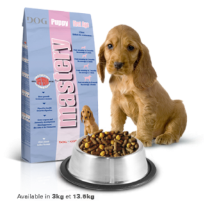 dry-food-for-dogs-mastery-mastery-food-for-puppies