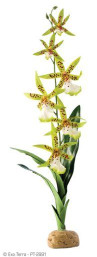 artificial-plants-for-reptiles-hagen-exo-terra-spider-orchid