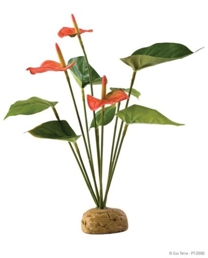 artificial-plants-for-reptiles-hagen-exo-terra-anthurium-bush