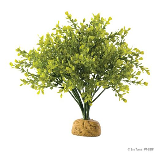 artificial-plants-for-reptiles-hagen-exo-terra-boxwood-bush
