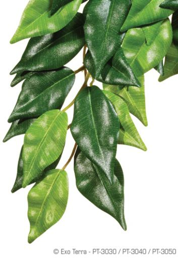 artificial-plants-for-reptiles-hagen-exo-terra-silk-plant-ficus-medium