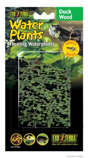 artificial-plants-for-reptiles-hagen-exo-terra-duckweed-floating-plants-15-cm
