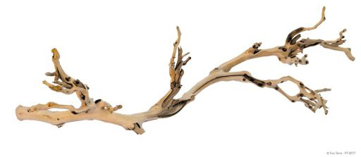 branches-tree-trunks-for-reptiles-hagen-exo-terra-forest-branch-large-60cm