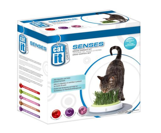 cat-nip-malt-more-for-cats-hagen-catit-senses-recambio-de-grama