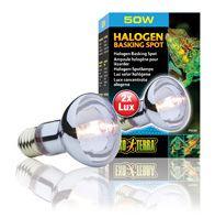 light-bulbs-for-reptiles-hagen-exo-terra-sun-glo-halogeno-50-w