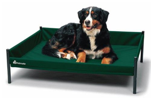 baskets-for-dogs-staywell-cuna-elevada-durabed-pequena-roja-53x53x30-