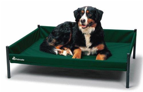 baskets-for-dogs-staywell-cuna-elevada-durabed-mediana-azul-69x53x30-